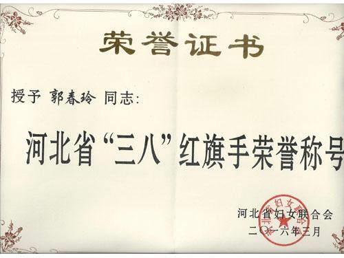 2016.3河北省三八红旗手